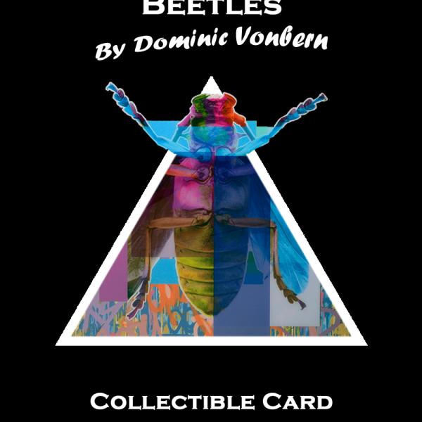 Artist Dominic Vonbern