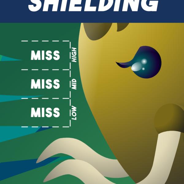"""Shielding"""